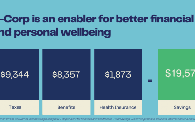 The Most Efficient Tax Structure for Self-Employed Business Owners?